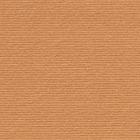 КАРТОН ELLE ERRE - 70/100 - 250 гр. - № 103 - СВЕТЛО КАФЯВ